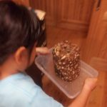 「もりのしいたけ農園」で娘が菌床椎茸デビュー